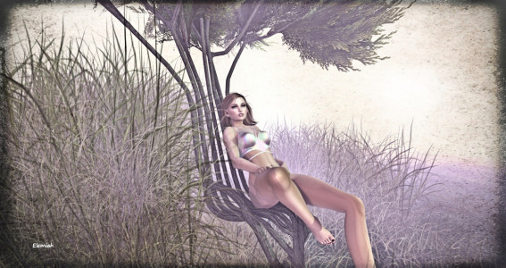 Warm Animations @ The Secret Affair (blog)