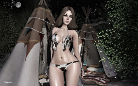 Cheyenne (blog)
