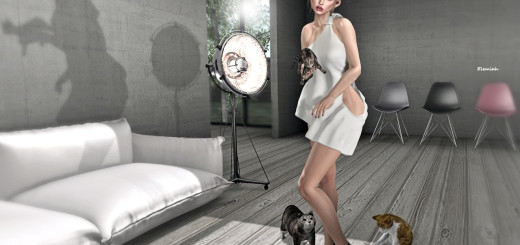 Girl and cats (blog)