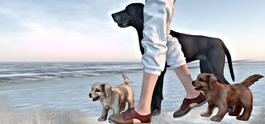 loyal-friends-blog