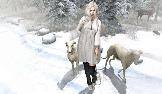 blizzard-blog
