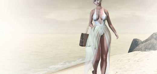 La belle vie (blog)