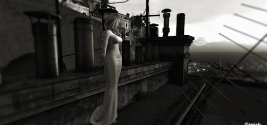 Bride on the roof (blog)