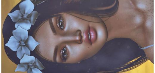 Mary (Blog)