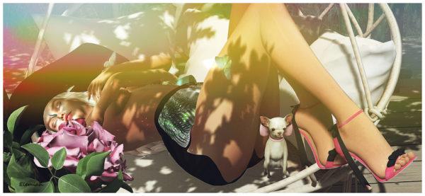 Summer siesta (blog)