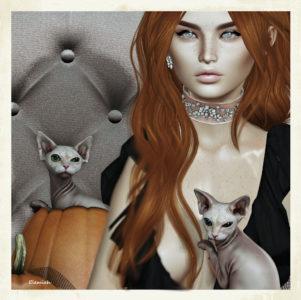 Sphynx (blog)