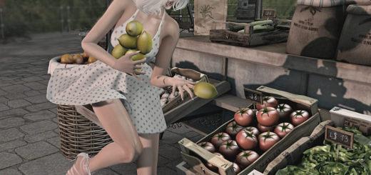 Citrons (blog)