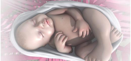 Just born (Blog)