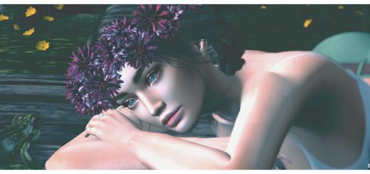 Sasha blog