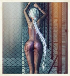 Wonder fence blog