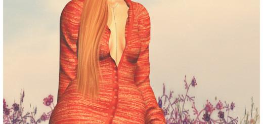 Orange flower blog