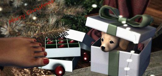 Merry Christmas (blog)