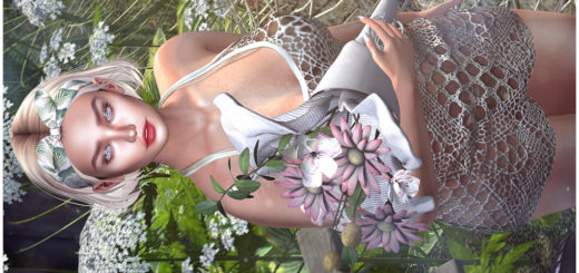 Comme des fleurs (Blog)