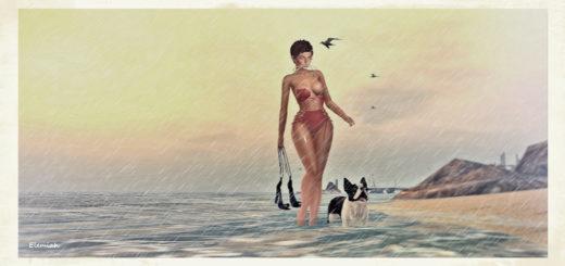 Wet walk (blog)