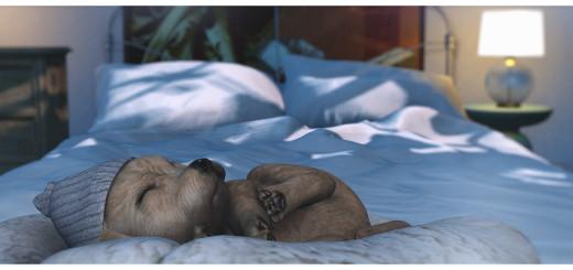 Sleepy Spring Puppy blog